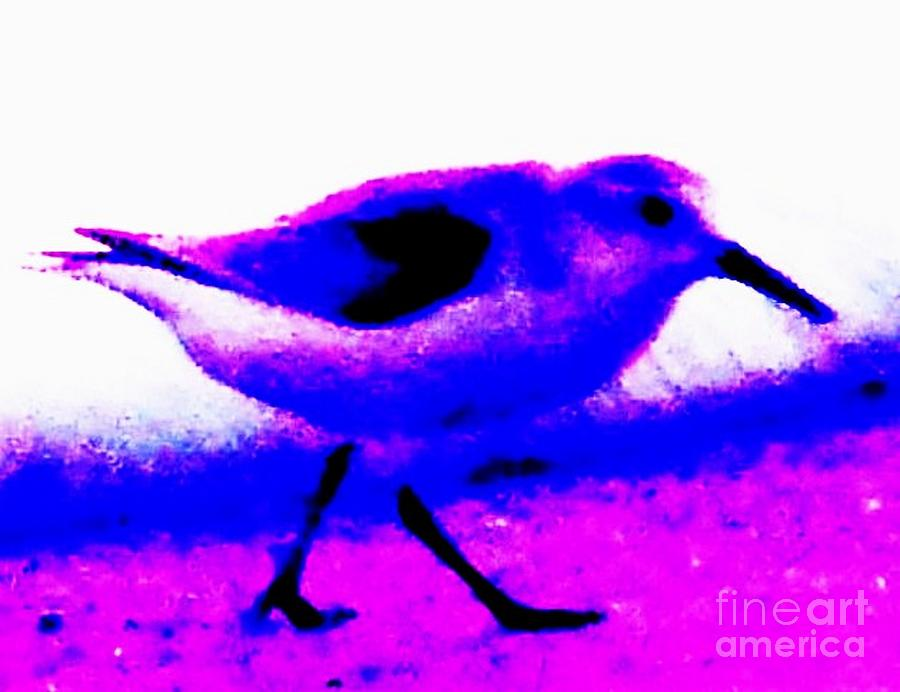 Sandpiper Abstract Painting  - Sandpiper Abstract Fine Art Print