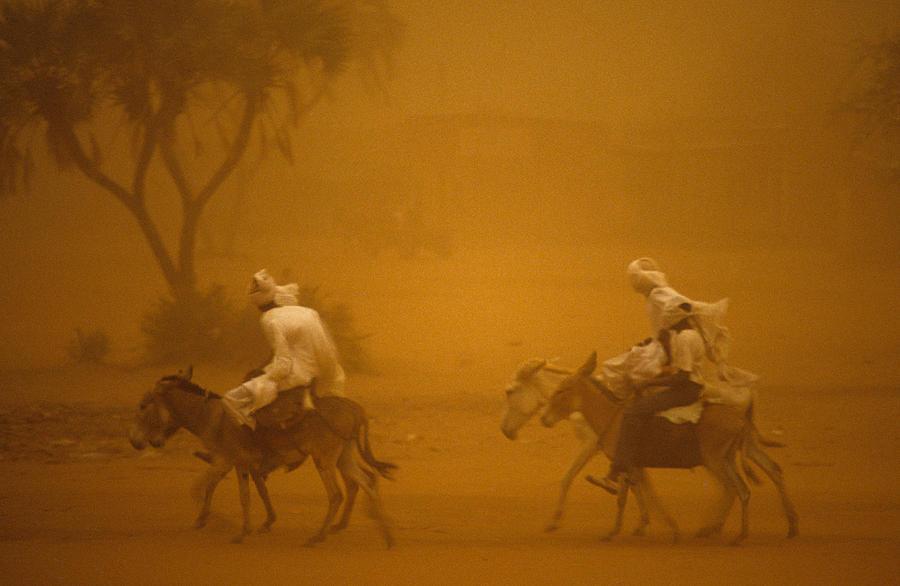 Sandstorm Travellers  Photograph