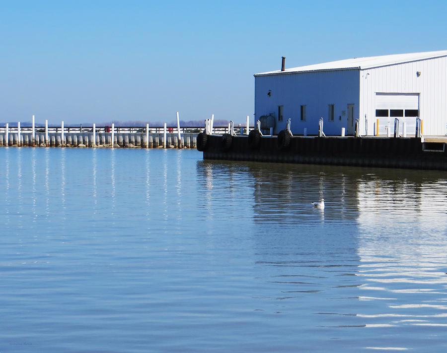 Sandusky bay reflections photograph by shawna rowe for Sandusky bay fishing