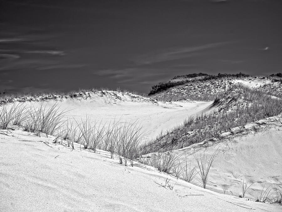 Sandy Neck Dunes 2 Photograph  - Sandy Neck Dunes 2 Fine Art Print