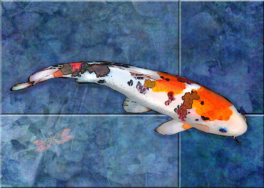 Watercolor Koi Fish Sanke Koi On Blue Watercolor