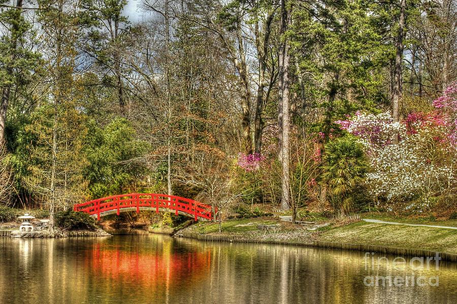 Sarah P. Duke Gardens Photograph