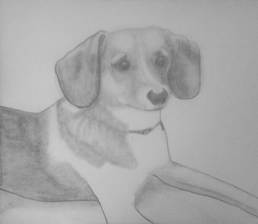 Sassy Drawing