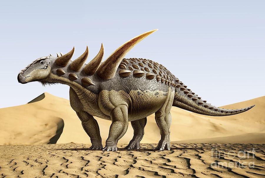 Sauropelta                     Sauropelta