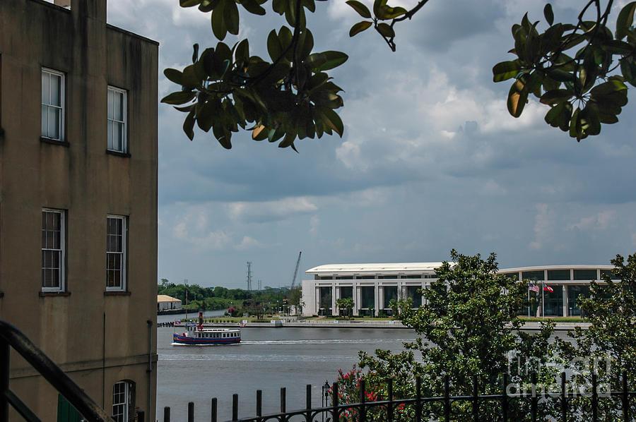 Savannah By Water Photograph