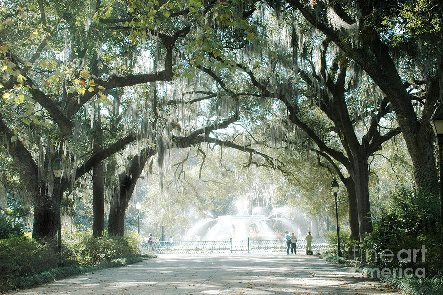 Savannah Georgia Forsythe Fountain Oak Trees With Moss Photograph  - Savannah Georgia Forsythe Fountain Oak Trees With Moss Fine Art Print