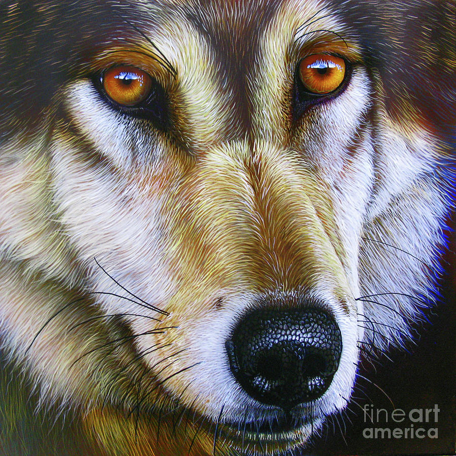 Save The Wolf Painting  - Save The Wolf Fine Art Print