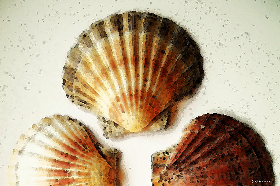 Scallop Shells - Beach Sea Art Painting  - Scallop Shells - Beach Sea Art Fine Art Print