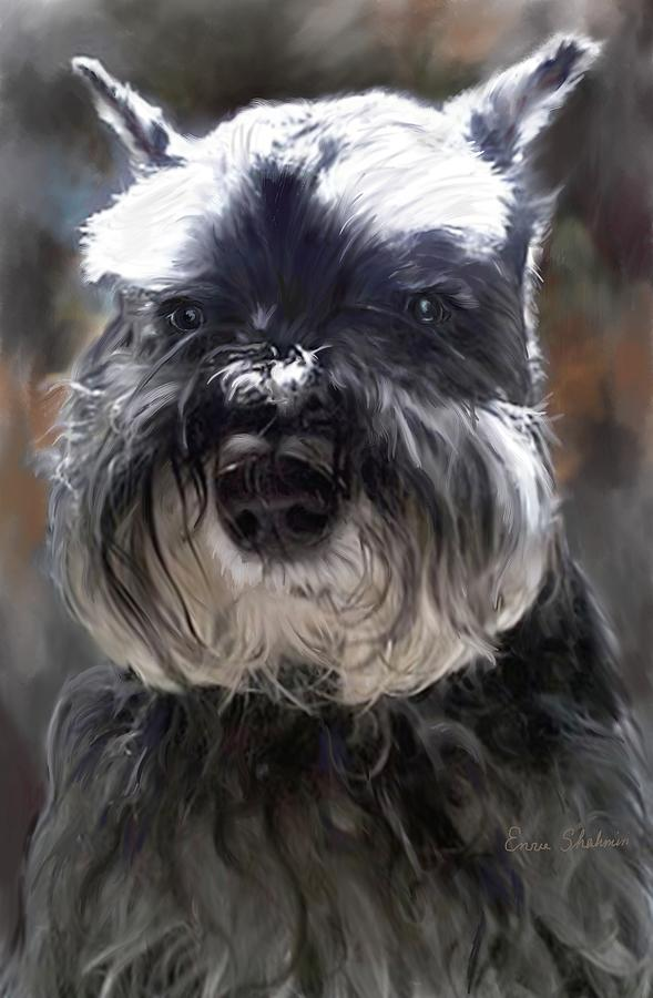 Schnauzer Portrait Digital Art