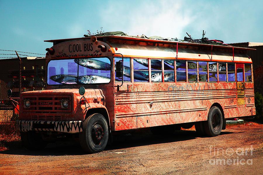 School Bus 5d24927 Photograph