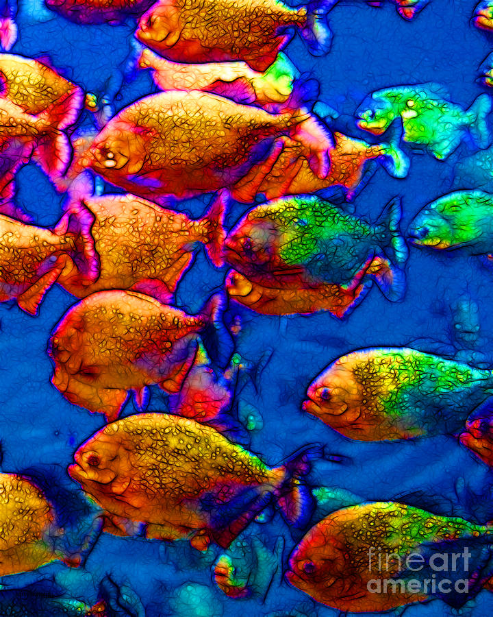 School Of Piranha V3 Photograph  - School Of Piranha V3 Fine Art Print