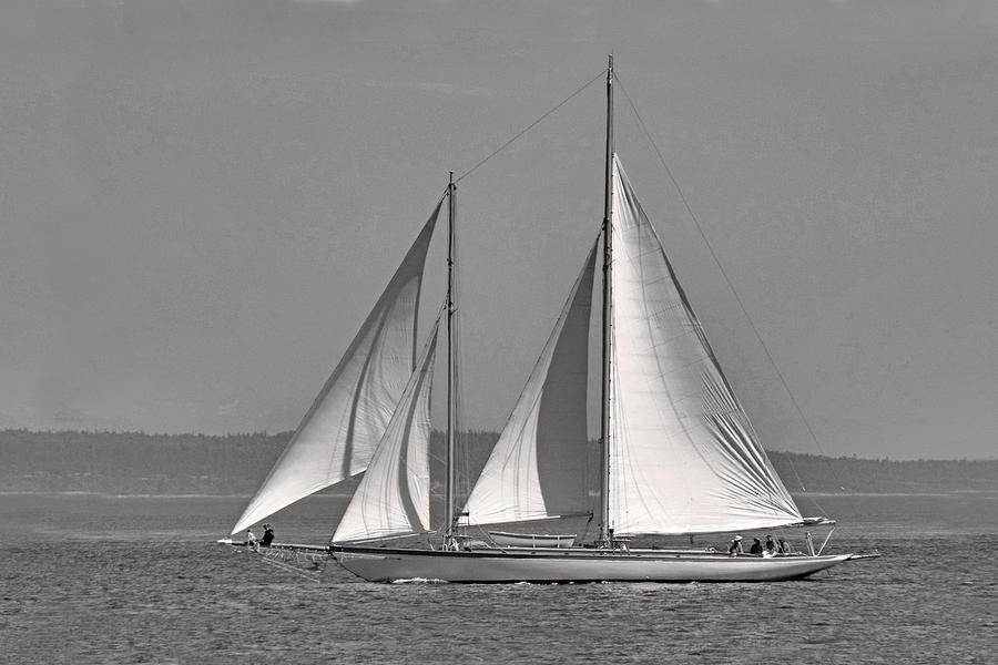 Schooner Photograph