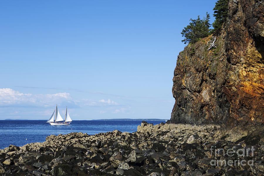 Schooner Sailing In The Bay Photograph
