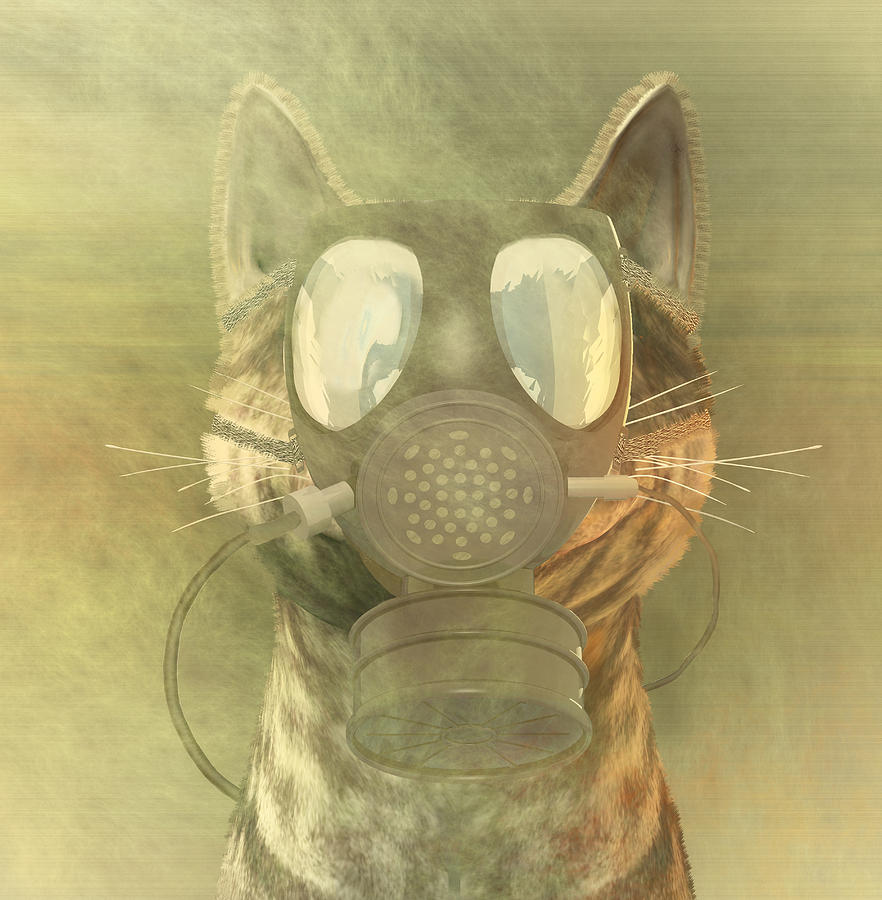 Schrodinger Underestimates The Cat. Digital Art
