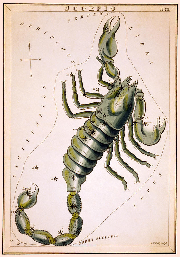 Scorpio Photograph - Scorpio Constellation  1825 by Daniel Hagerman