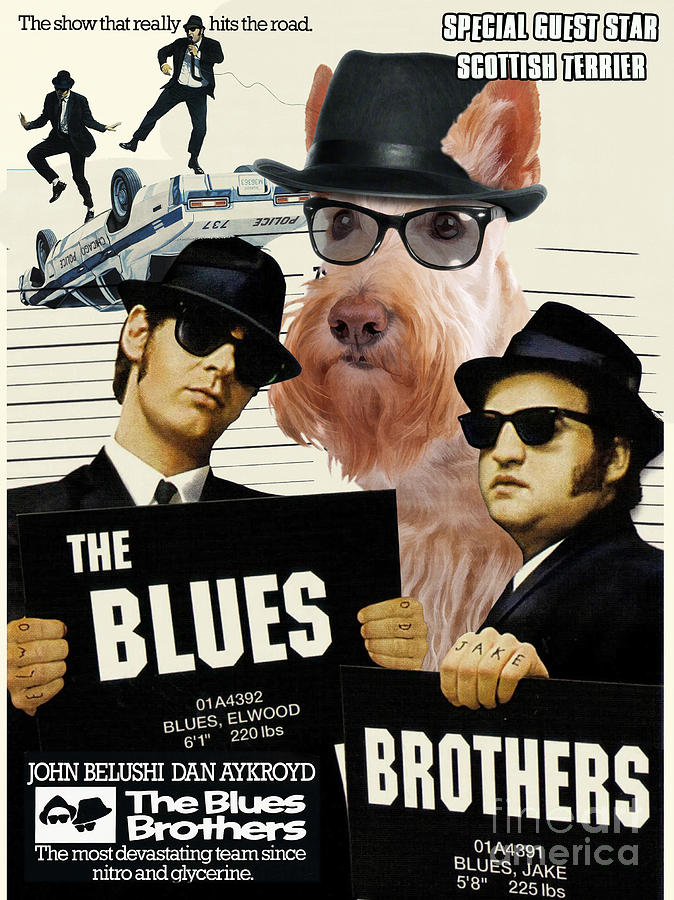 Scottish Terrier Painting - Scottish Terrier Art Canvas Print - The Blues Brothers Movie Poster by Sandra Sij