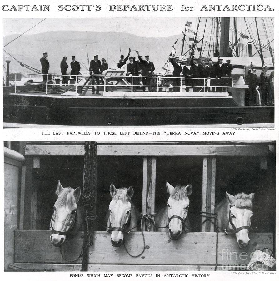 Scotts Departure For Antarctica Ponies Photograph