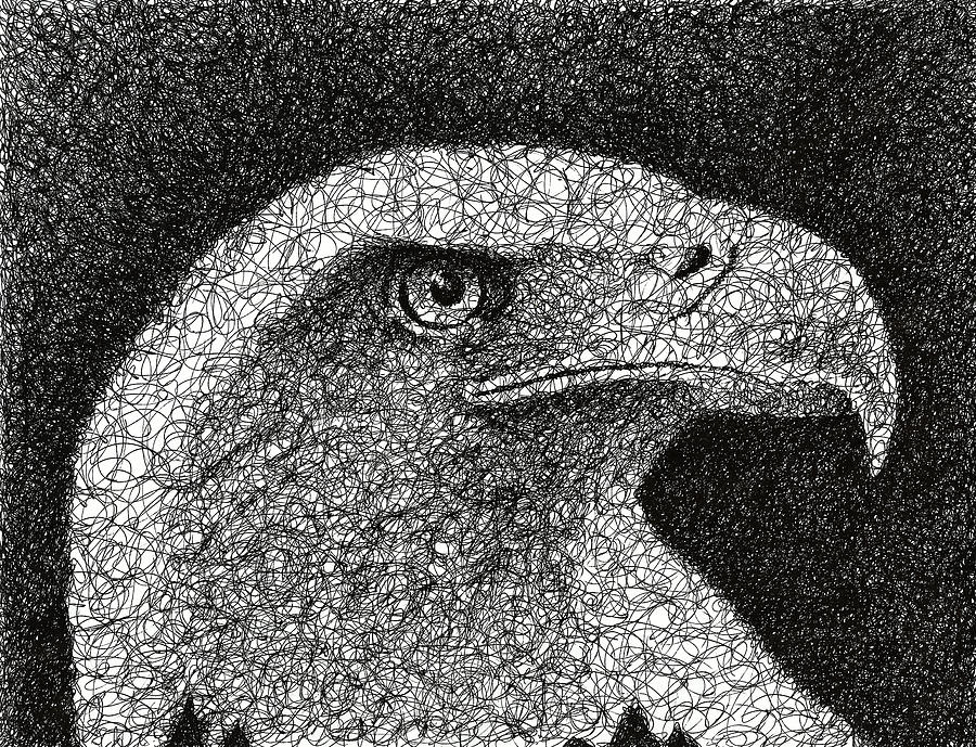 Scribble Eagle Drawing By Nathan Shegrud