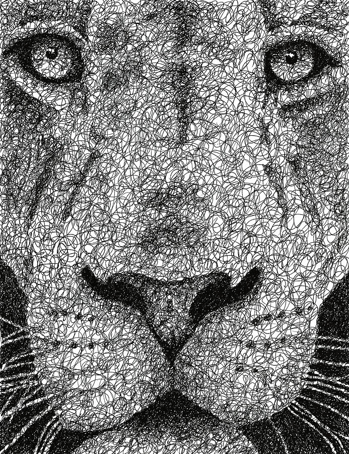 Scribble In Drawing : Scribble lion drawing by nathan shegrud
