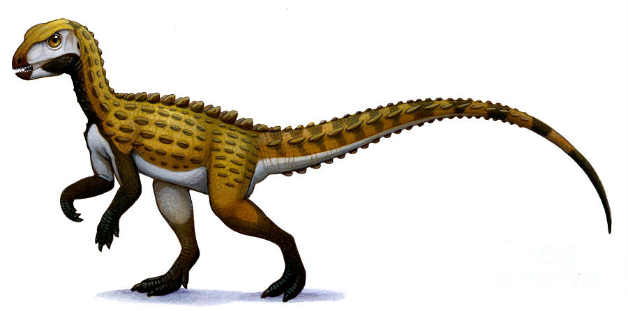 Scutellosaurus, An Early Jurassic Digital Art