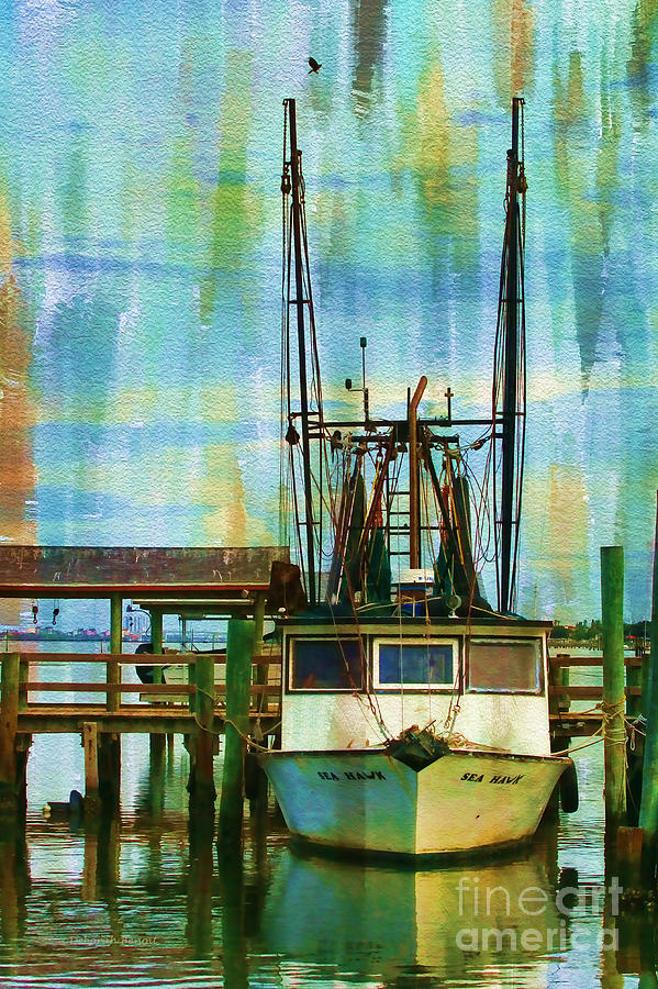 Sea Hawk Docked Photograph  - Sea Hawk Docked Fine Art Print