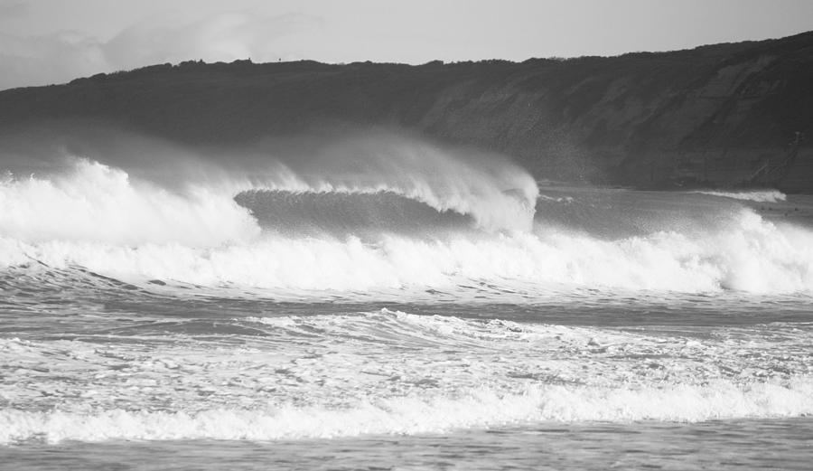 Sea Horses I Photograph