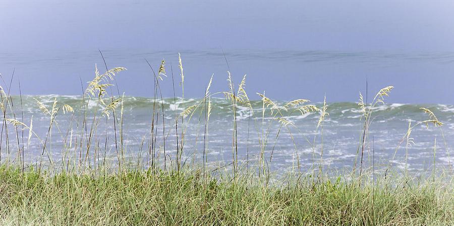 4th Photograph - Sea Oats Panorama 1 by Karen Stephenson