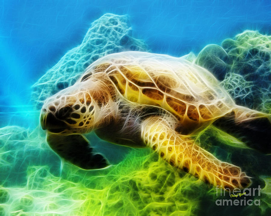Sea Photograph - Sea Turtle 1 by Cheryl Young