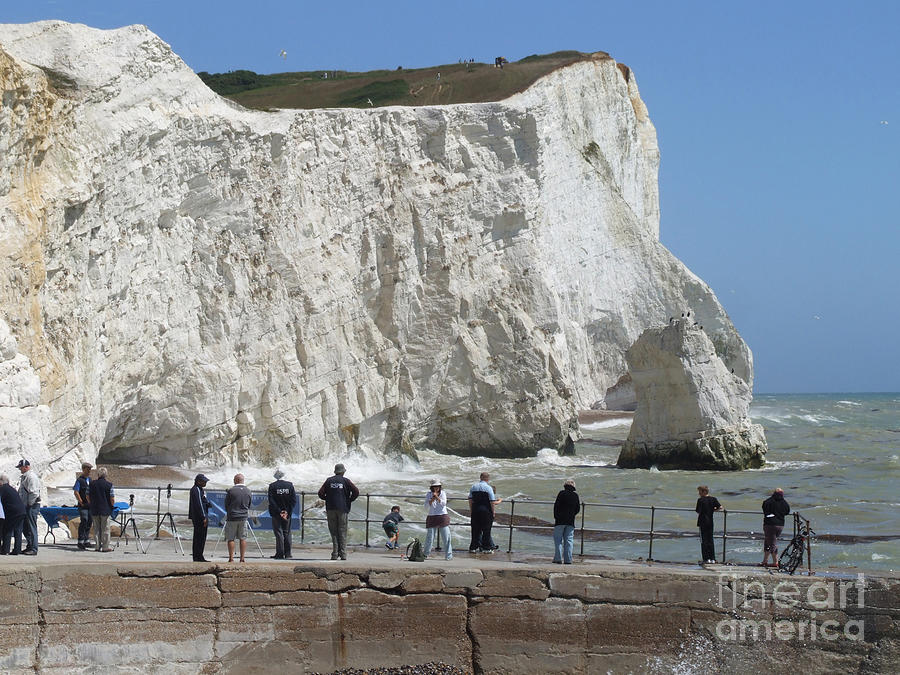 Seaford Head Cliffs Photograph