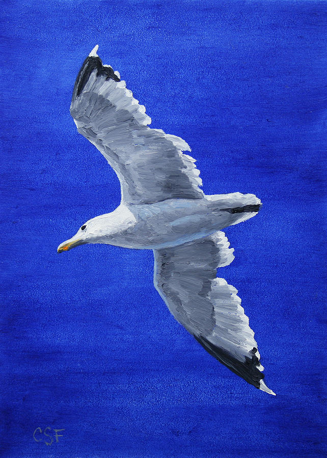 Seagull In Flight Painting  - Seagull In Flight Fine Art Print
