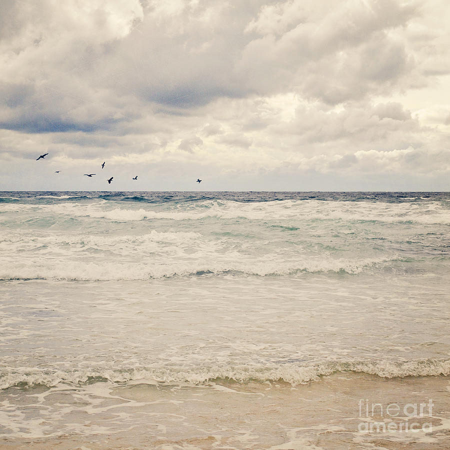 Birds Photograph - Seagulls Take Flight Over The Sea by Lyn Randle