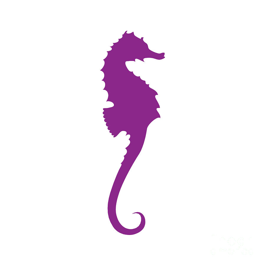 purple seahorse clipart Orca Art killer whale clip art word