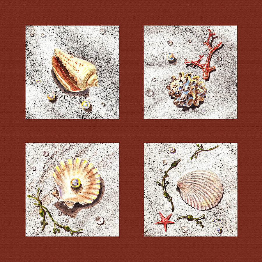 Seashell Collection Iv Painting