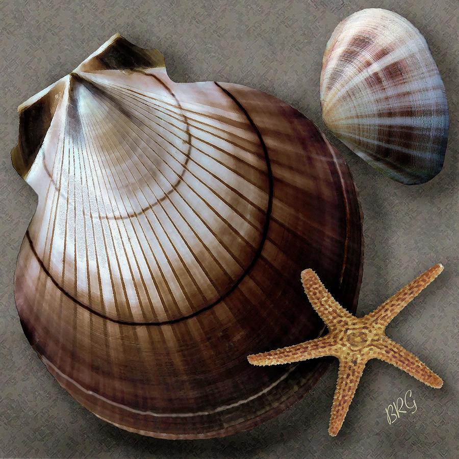Seashell Photograph - Seashells Spectacular No 38 by Ben and Raisa Gertsberg