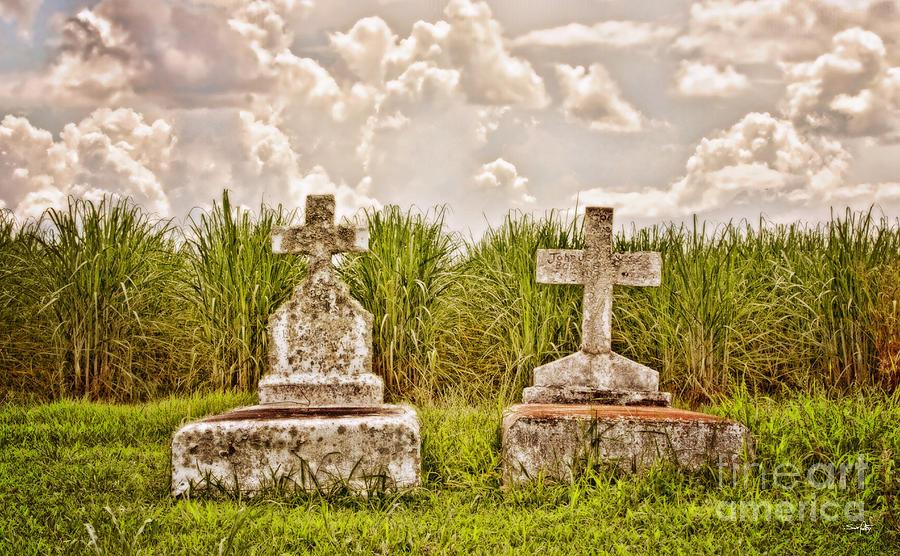 Grave Photograph - Seasons Of Life by Scott Pellegrin