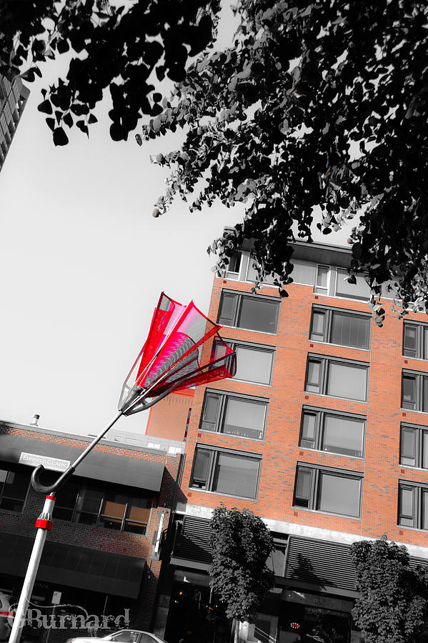 Seattle Photograph - Seattle Red Umbrella  by Guinapora Graphics