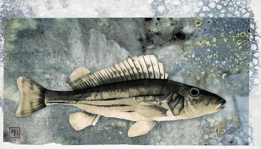 Fish Photograph - Seaworthy by Carol Leigh