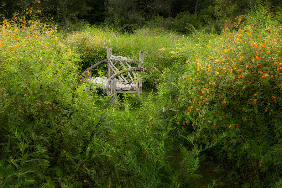Bench Photograph - Seclusion by Bill Wakeley