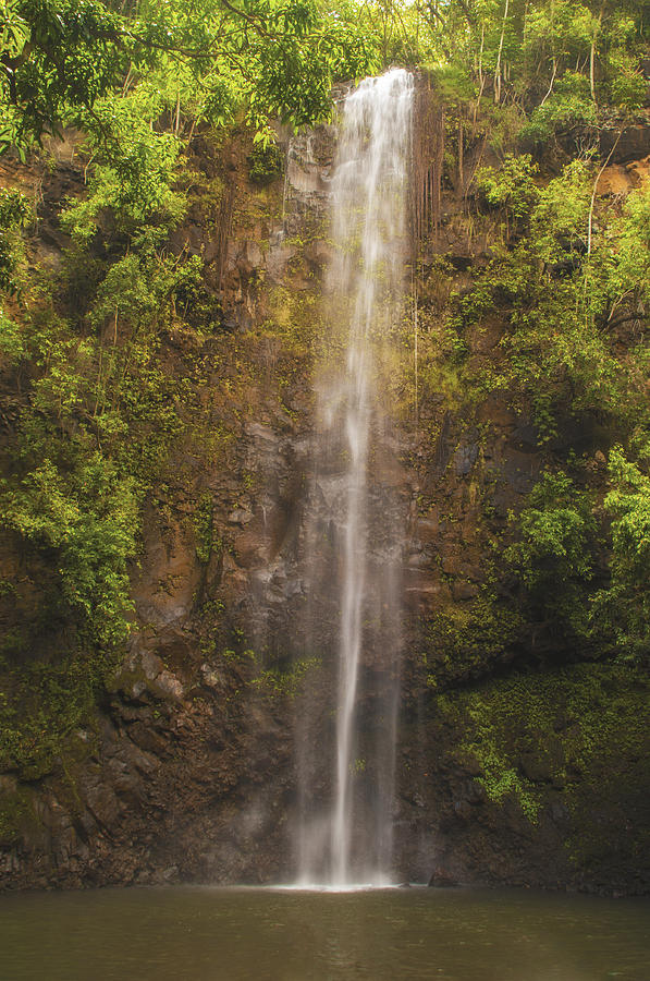 Secret Falls Kauai Hawaii Waterfall Landscape Photograph - Secret Falls by Brian Harig