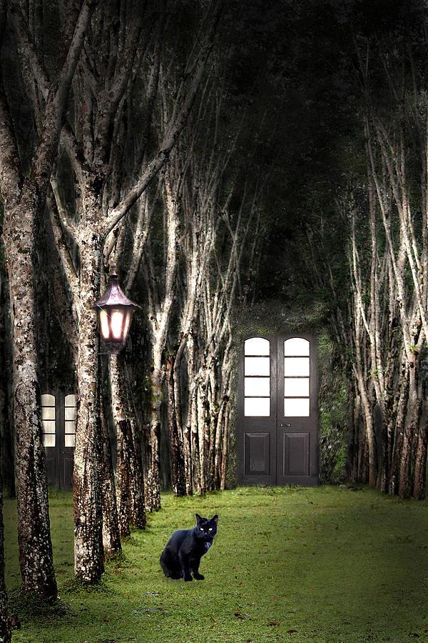 Forest Painting - Secret Forest Dwelling by Nirdesha Munasinghe