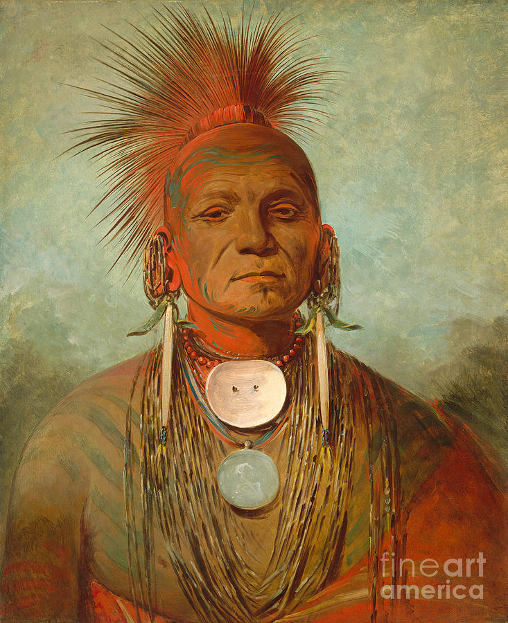 Native; American; Indian; Male; Head; Shoulders; Traditional; Dress; Clothing; Face; Paint; Shaman; Fierce; Proud; Jewellery; Ethnic; Earring; Witch; Doctor; Powerful; Tribal; Tribe; Feathered; Headdress Painting - See Non Ty A An Iowa Medicine Man by George Catlin