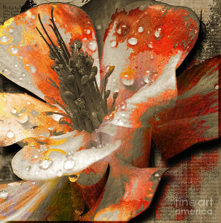 Mixed Media - Seeds by Yanni Theodorou
