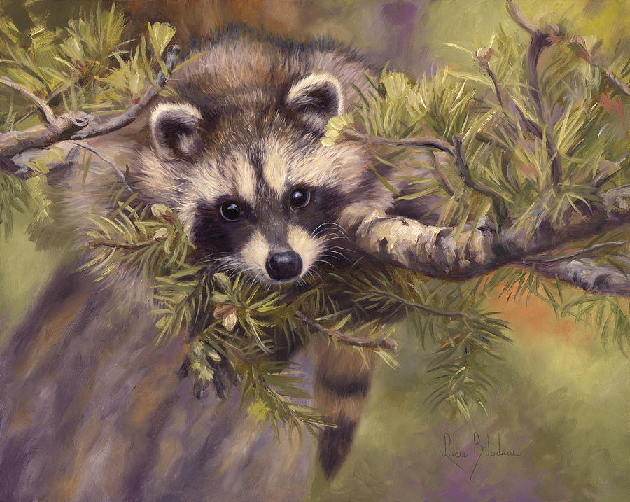 Seeking Mischief Painting by Lucie Bilodeau Raccoon Painting