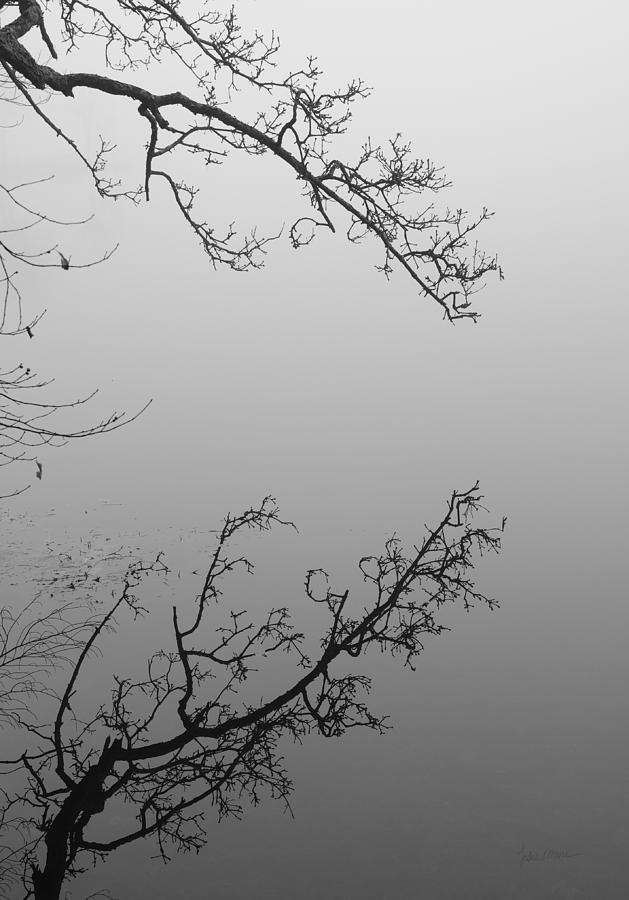Self-reflection Photograph