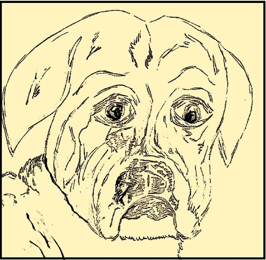 Sepia - Boxer Baby Drawing