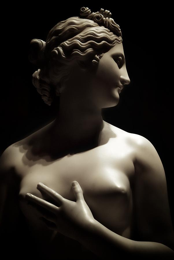 Sepia Female Bust Sculpture  - Sepia Female Bust Fine Art Print