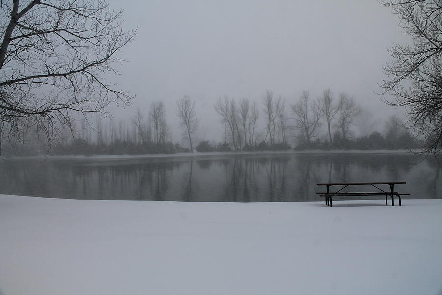 Winter Photograph - Serene  by Alicia Knust