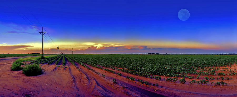 West Texas Photograph - Serenity by Robert Hudnall