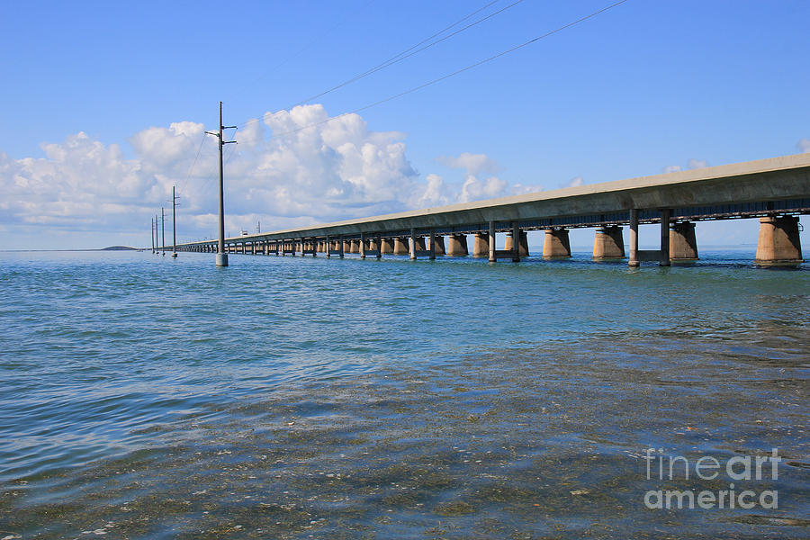 Seven Mile Bridge Marathon Photograph