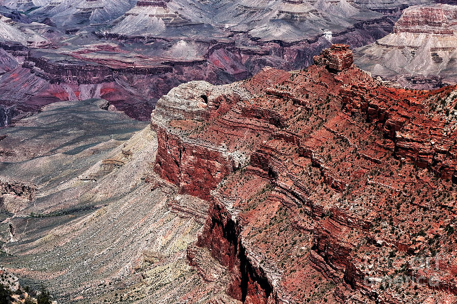 Shades Of Red In The Canyon Photograph  - Shades Of Red In The Canyon Fine Art Print